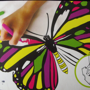 COLOUR MY OWN T-Shirt Transfer Black Felt LARGE Retro BUTTERFLY Color In New