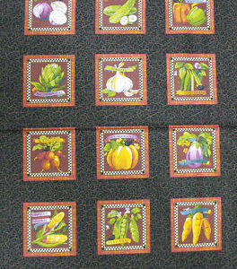 COUNTRY-CHIC-FABRIC-FRUIT-LARGE-PANEL-NEW-160546558345