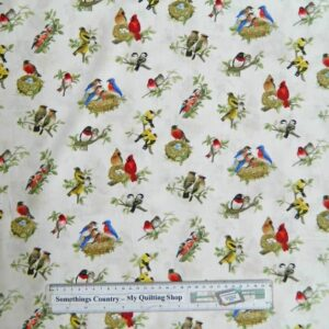 Patchwork-Quilting-Fabric-Beautiful-Birds-Material-Cotton-FQ-50x55cm-NEW-161533098001
